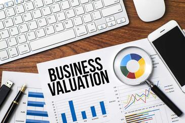 Business Valuation - Form 5500